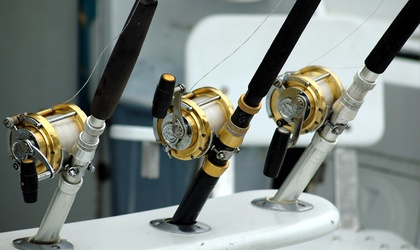 The Most Expensive Spinning Reel to Use: Worth Every Penny